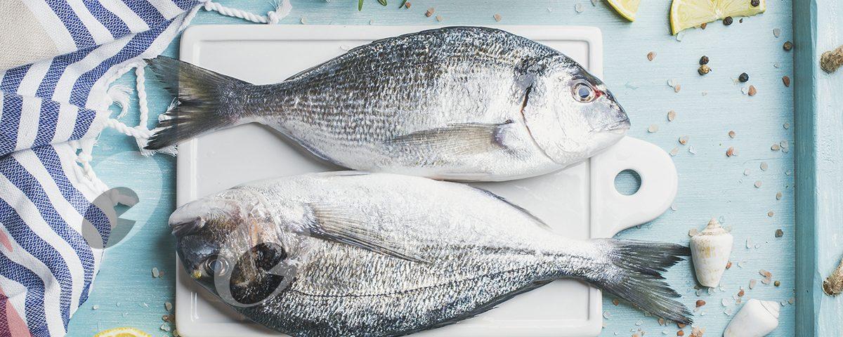 ¿Cuáles son los pescados blancos?